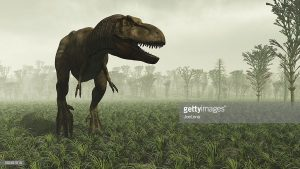 T-rex in the wild. Prehistoric accurate Horsetail carboniferous trees.